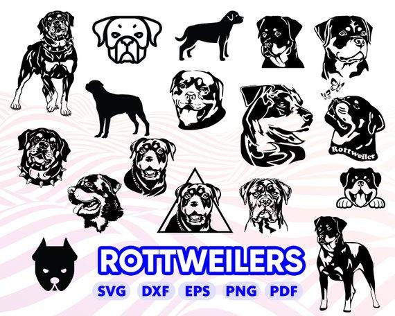 Rotweilers clipart clip art transparent ROTTWEILERS SVG, Rottweiler Silhouette, Rottweiler Clipart ... clip art transparent