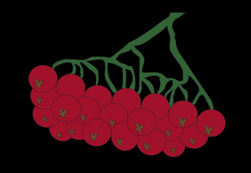 rowan tree raster clipart image library library