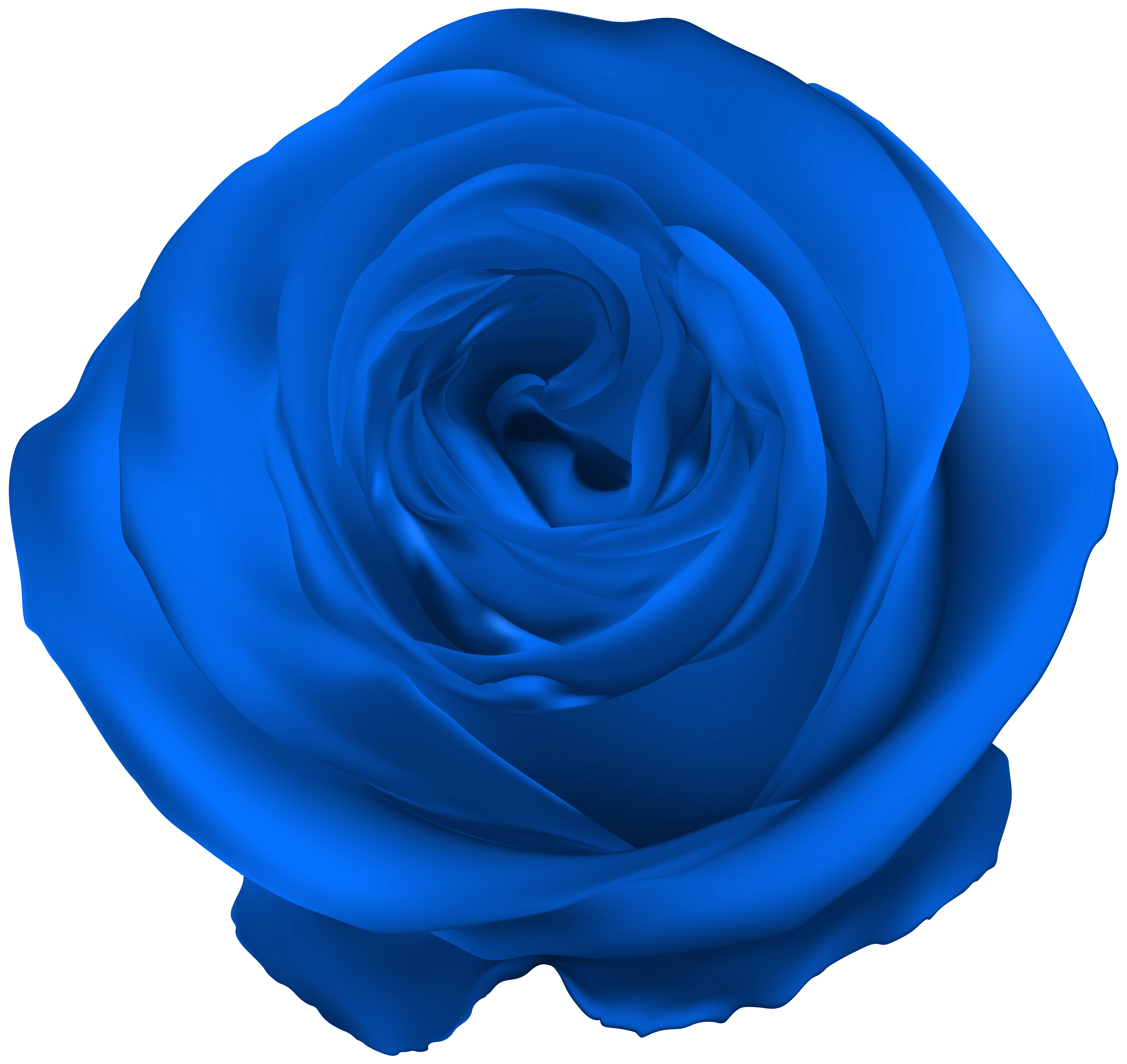 Blue Rose PNG Clip Art | Gallery Yopriceville - High-Quality Images ... png freeuse