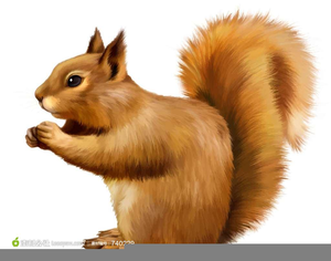 Squirrel clipart public domain vector black and white download Squirrel Clipart | Free Images at Clker.com - vector clip ... vector black and white download