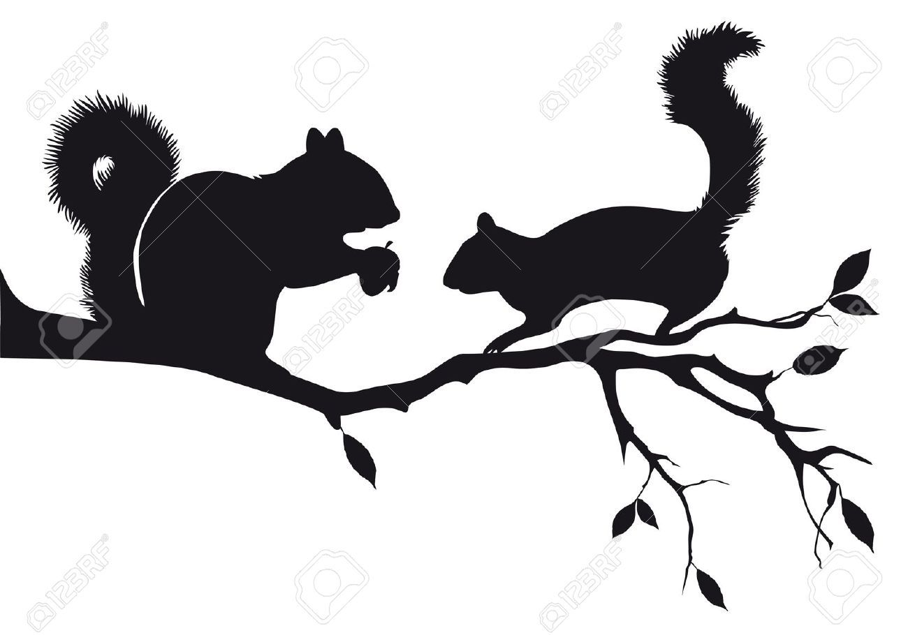 Royalty free squirrel clipart picture library stock Squirrel Stock Illustrations, Cliparts And Royalty Free ... picture library stock