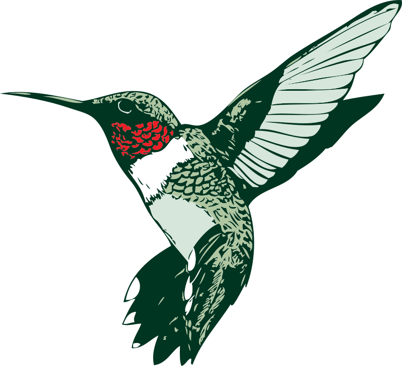 Ruby throated hummingbird clipart clipart royalty free library Free Clipart: Ruby-throated Hummingbird | tawm1972 clipart royalty free library