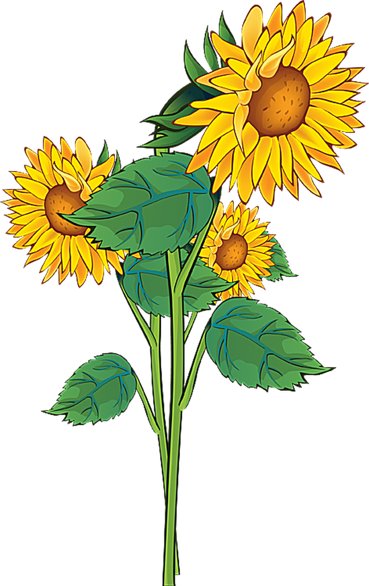 Rustic flower clipart png freeuse stock Summer Flowers Clipart at GetDrawings.com | Free for personal use ... png freeuse stock