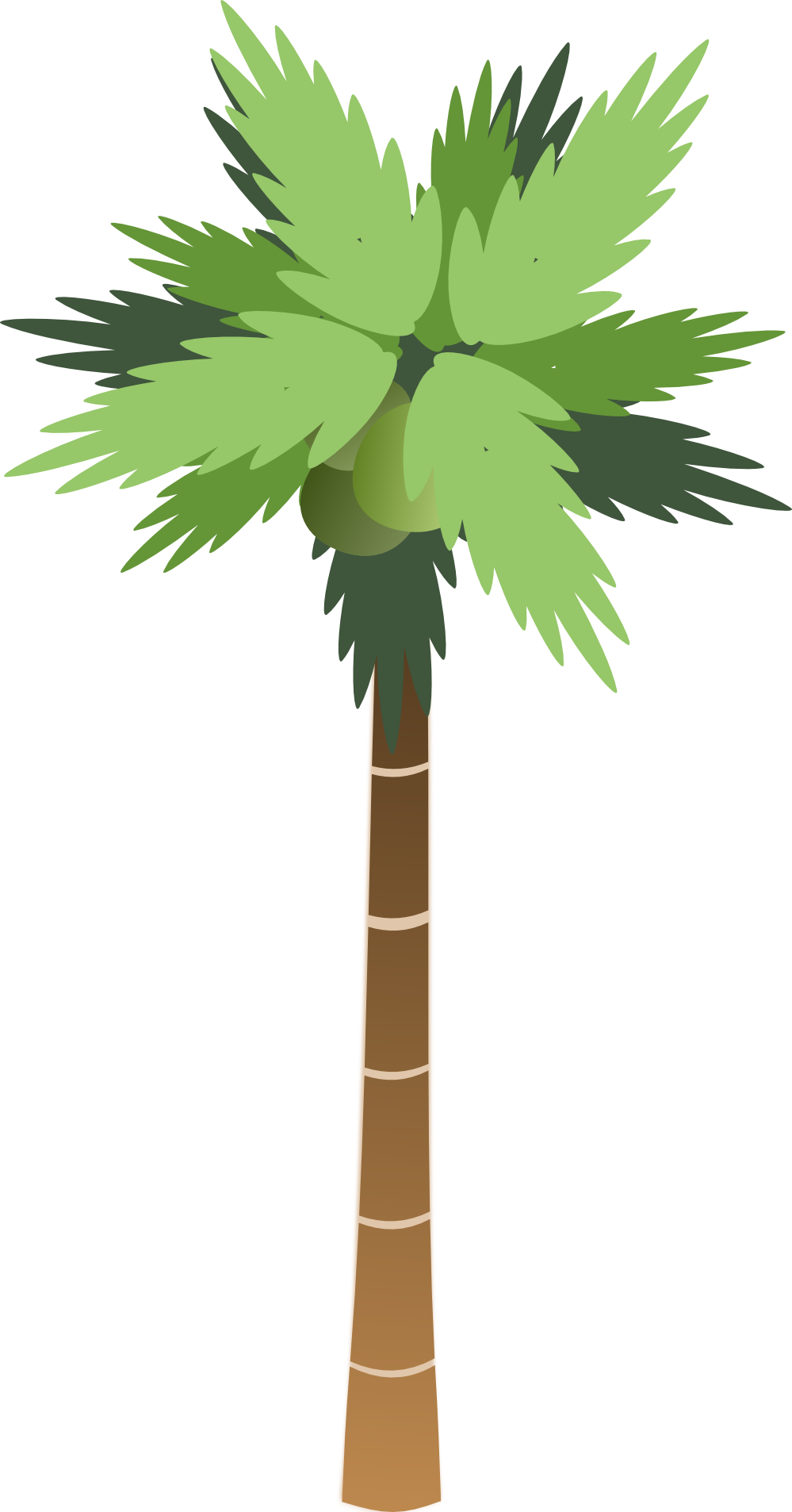 Sabal palm clipart vector freeuse Free Palmetto Tree Picture, Download Free Clip Art, Free ... vector freeuse
