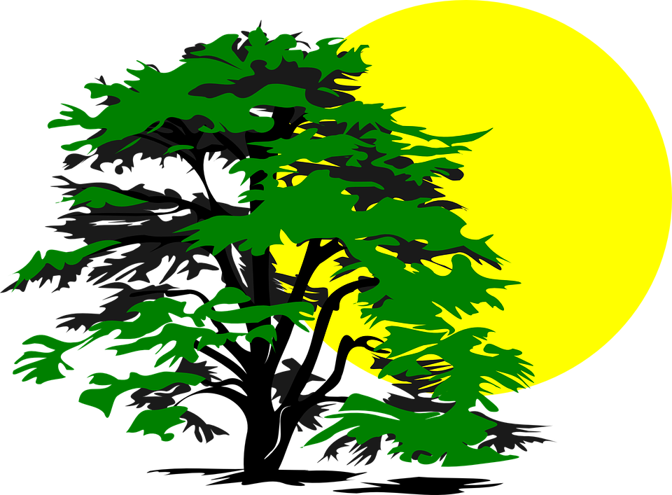 Sad tree clipart banner Collection of Disney Tree Cliparts   Buy any image and use it for ... banner