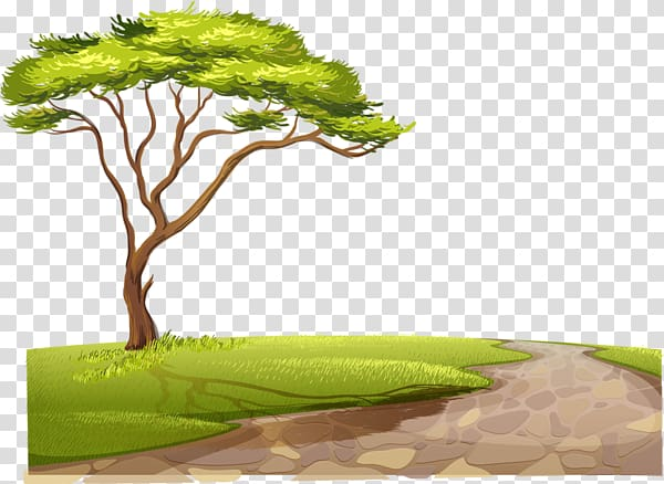 Safari dirt road clipart banner library Green leafed tree , Fauna of Africa Lion , Country Road ... banner library