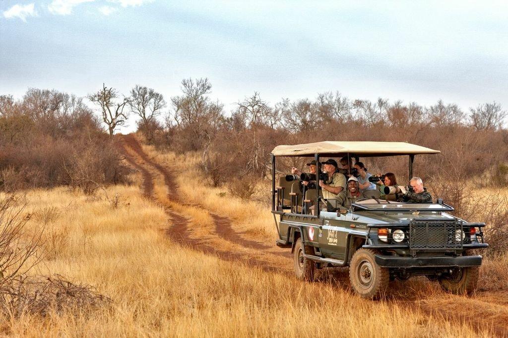 Safari dirt road clipart vector Game Drives   Safari Trips Africa & Beyond   Extraordinary ... vector