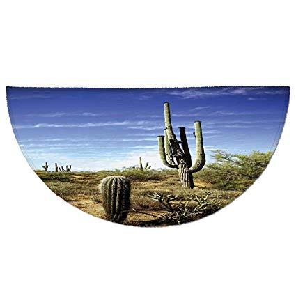 Saguaro in dirt clipart image Amazon.com: Half Round Door Mat Entrance Rug Floor Mats ... image