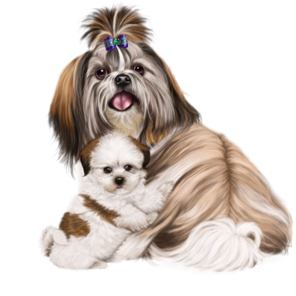 Sailor suit dog clipart picture library library chiens,dog,puppies,wallpapers | DĚTSKÉ OBRÁZKY | Pinterest | Dog picture library library