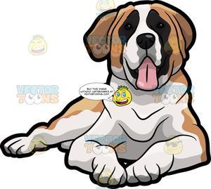 Saint bernard clipart clip art free library A Friendly St Bernard Dog Taking A Break clip art free library