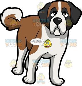 Saint bernard clipart graphic transparent A Curious Young St Bernard Dog graphic transparent
