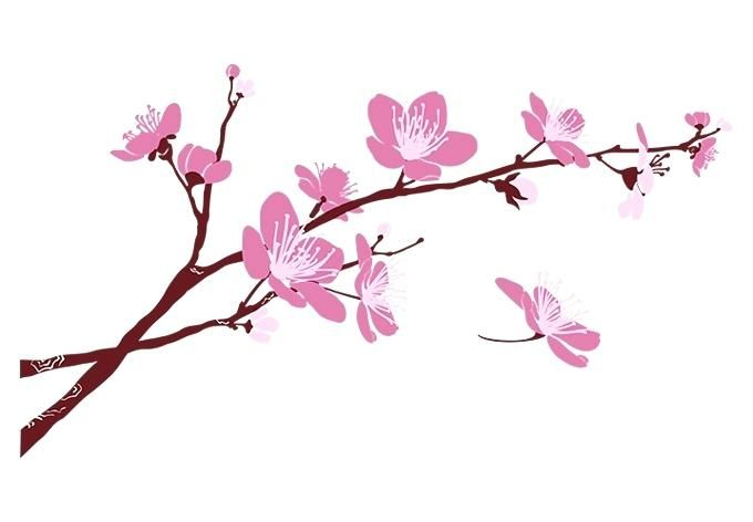 Sakura branch clipart clip art black and white cherry blossom branch cherry blossom branch eso price cherry ... clip art black and white