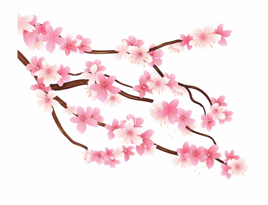 Sakura branch clipart clip art free Pink Spring Branch Png Clipart Image - Transparent ... clip art free
