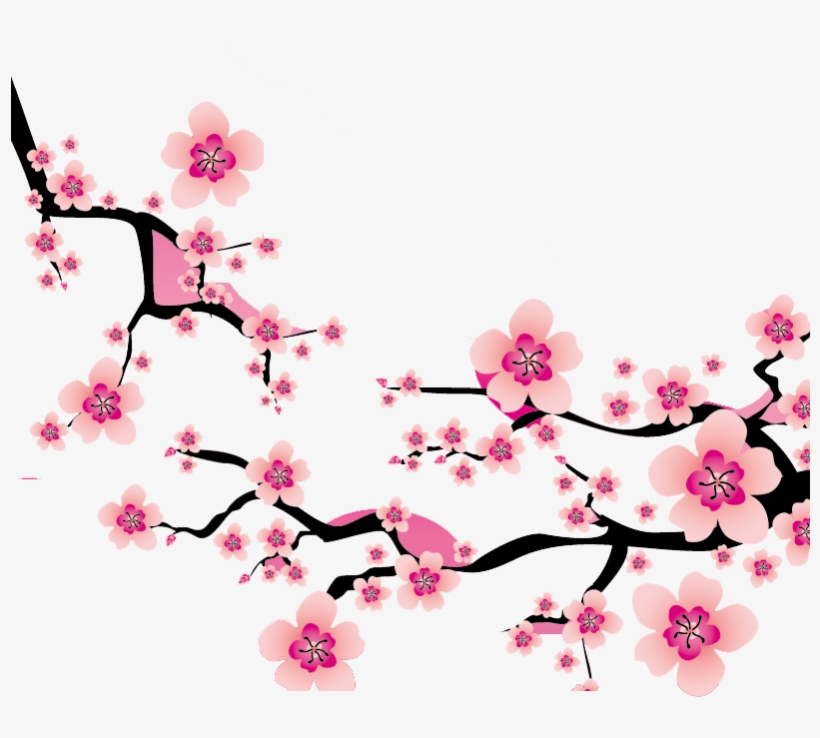 Sakura branch clipart banner transparent download Sakura Branch Drawing | Free download best Sakura Branch ... banner transparent download