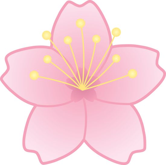 Sakura flower clipart png picture free download 17 Best images about cherry blossoms everywhere on Pinterest ... picture free download