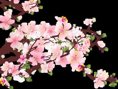 Sakura flower clipart png clip art stock Sakura Flower Clipart Png - clipartsgram.com clip art stock