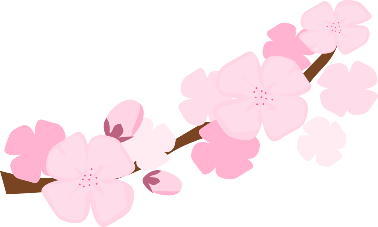 Apple blossoms clipart graphic transparent stock Sakura flower clipart - ClipartFest graphic transparent stock