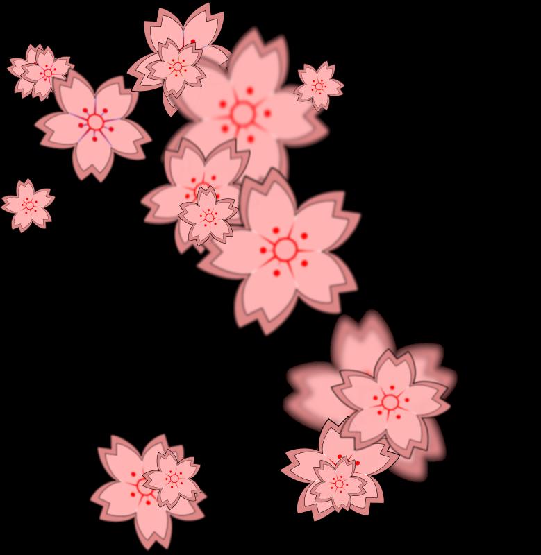 Sakura flower clipart png graphic transparent download Sakura flower clipart png - ClipartFest graphic transparent download