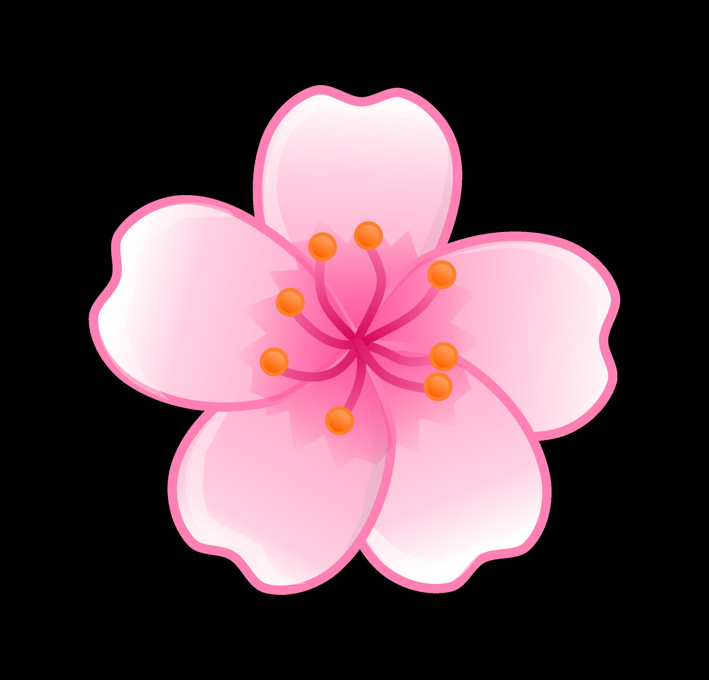 Sakura flower clipart png image free Sakura flower clipart png - ClipartFest image free