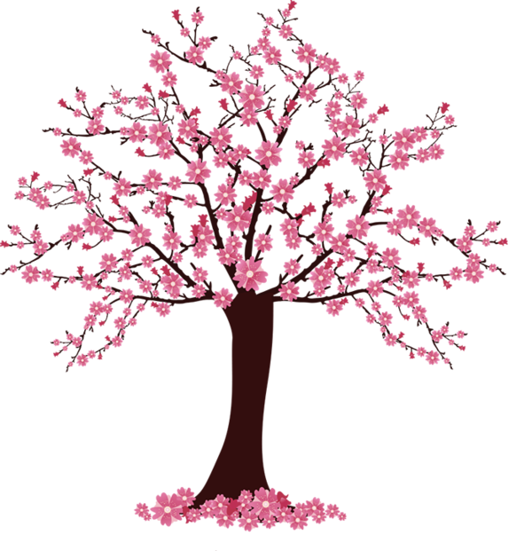 Cherry blossom Tree Clip art - sakura tree 600*621 transprent Png ... clipart freeuse