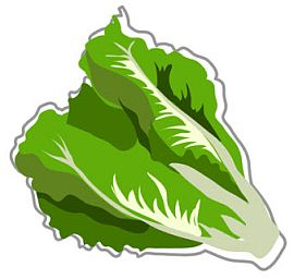Salad leaf clipart svg royalty free library Free Lettuce Cliparts, Download Free Clip Art, Free Clip Art ... svg royalty free library