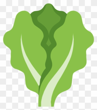 Salad leaf clipart clip library stock Free PNG Lettuce Clip Art Download - PinClipart clip library stock