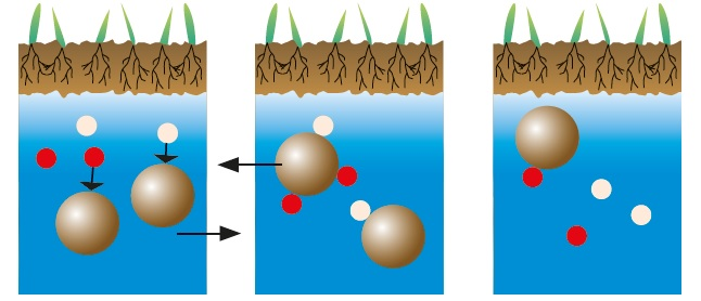 Salinization clipart graphic freeuse Humintech GmbH: What are Humic Acids? graphic freeuse