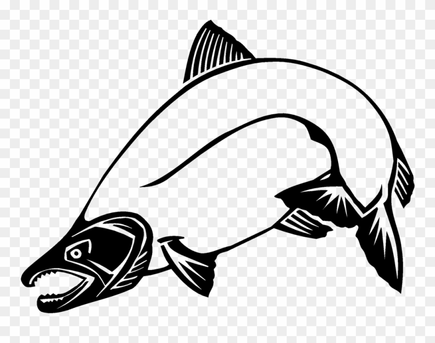Salmom clipart vector royalty free Attractive Salmon Clip Art Chinook Other 1000 744 Transprent ... vector royalty free