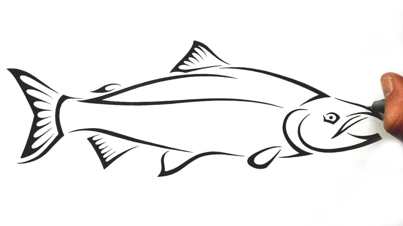 Salmon clipart line drawing clipart free download How to Draw a Salmon Fish - Tribal Tattoo Design Style ... clipart free download