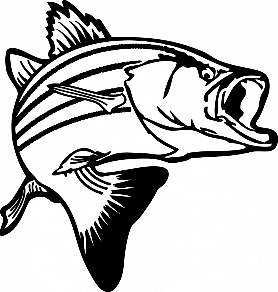 Salmon clipart line drawing graphic library download Free Salmon Cliparts, Download Free Clip Art, Free Clip Art ... graphic library download