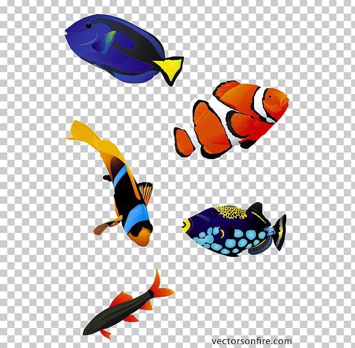 Saltwater clipart jpg royalty free stock Koi Saltwater Fish PNG, Clipart, Animals, Aquarium, Clip Art ... jpg royalty free stock