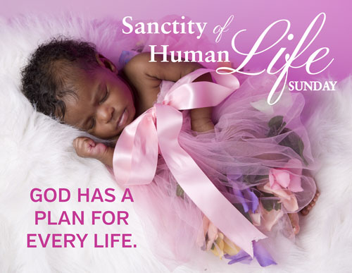 Sanctity of human life sunday 2018 clipart picture transparent stock ProLife National Events   Calendar For Life picture transparent stock