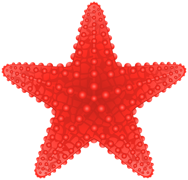 Sand sun and starfish picture clipart clip freeuse stock Starfish Transparent PNG Clip Art Image | beach clipart | Pinterest ... clip freeuse stock