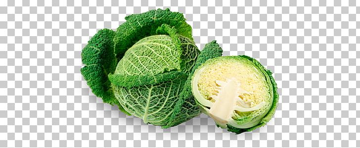 Saurkraut clipart graphic transparent download Savoy Cabbage Vegetable Capitata Group Variety Sauerkraut ... graphic transparent download