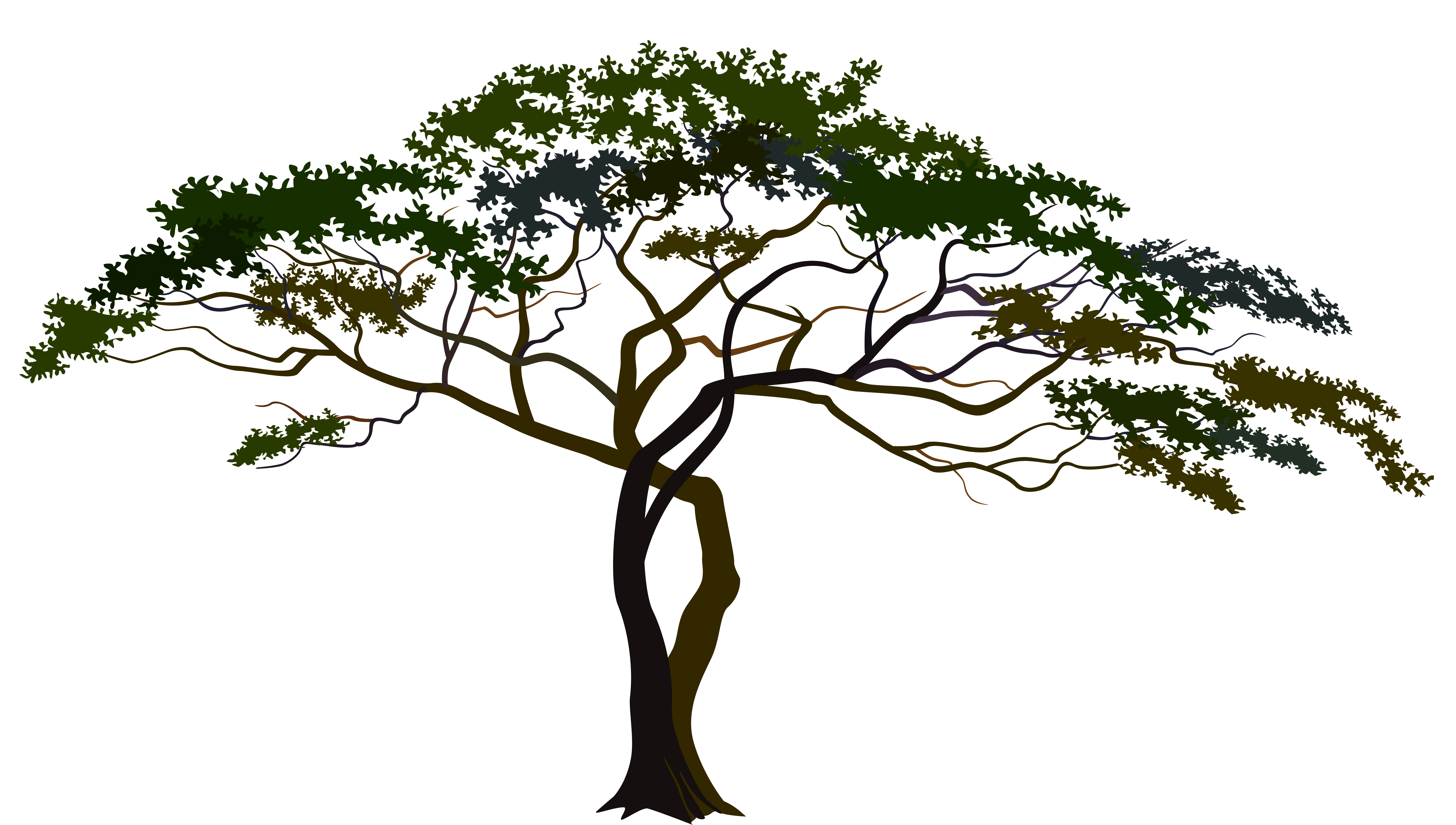 Tree clipart with transparent background graphic transparent download Savannah Tree PNG Clipart Image | Gallery Yopriceville - High ... graphic transparent download