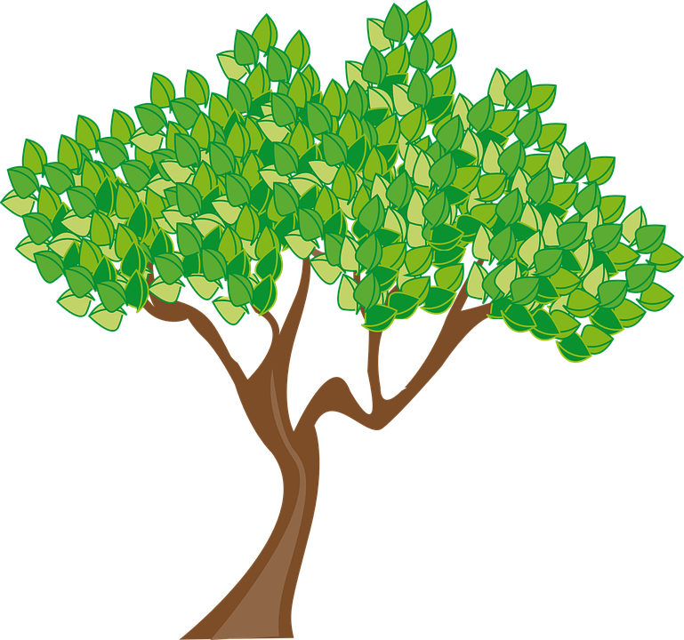 Cartoon Tree Cliparts#4465512 - Shop of Clipart Library picture freeuse download