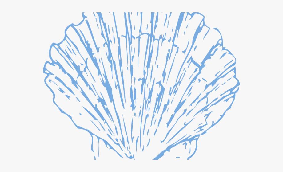Scallops clipart banner transparent Scallop Cliparts - Seashell Clipart Blue #265989 - Free ... banner transparent