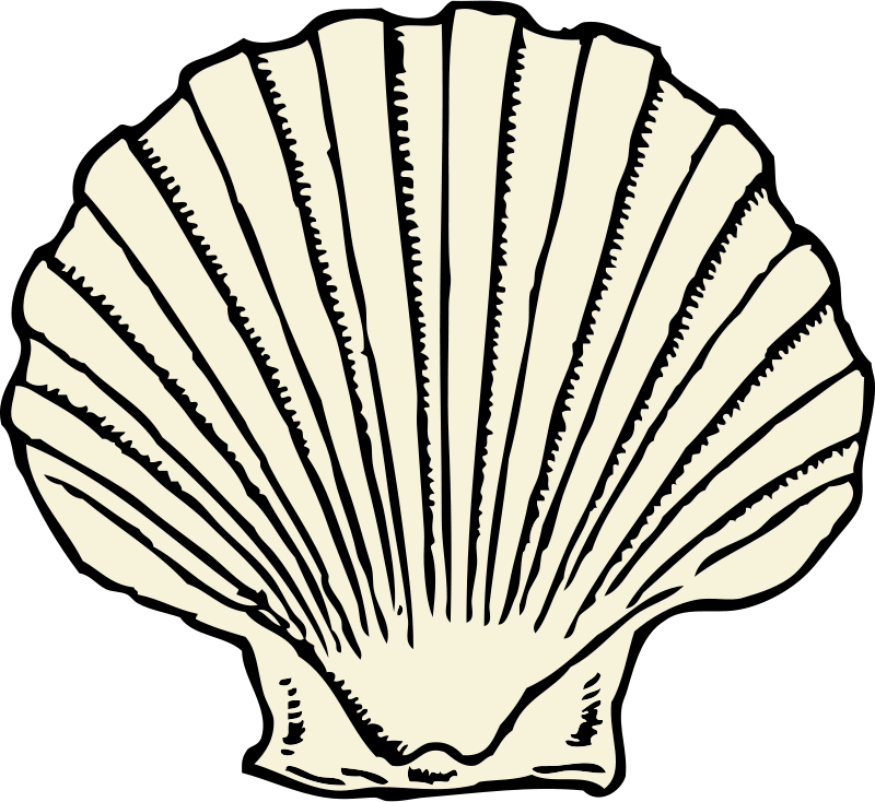 Scallops clipart jpg freeuse Free Clipart: Scallop shell | johnny_automatic jpg freeuse