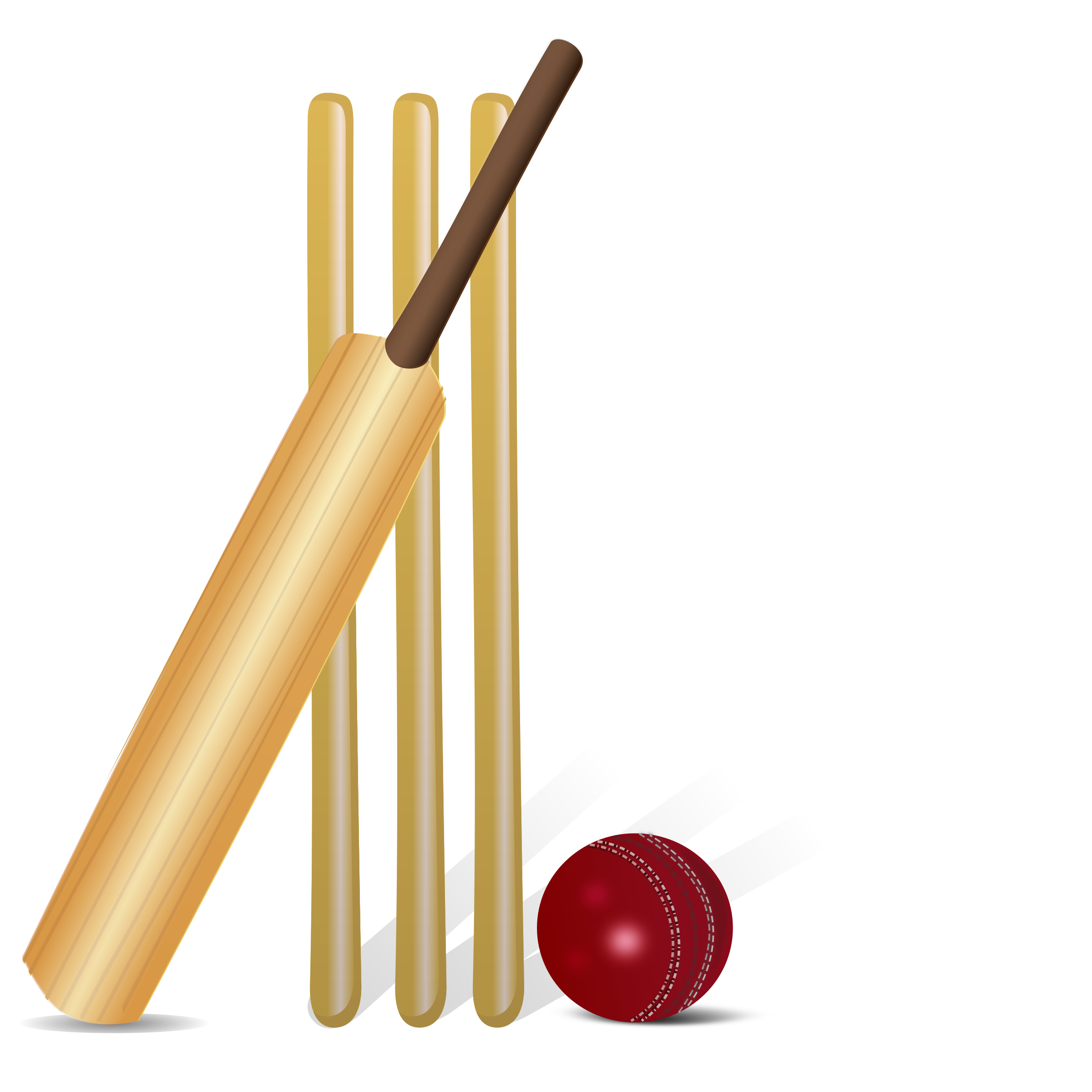 Cricket by gnokii | clipart | Pinterest | Cricket svg freeuse