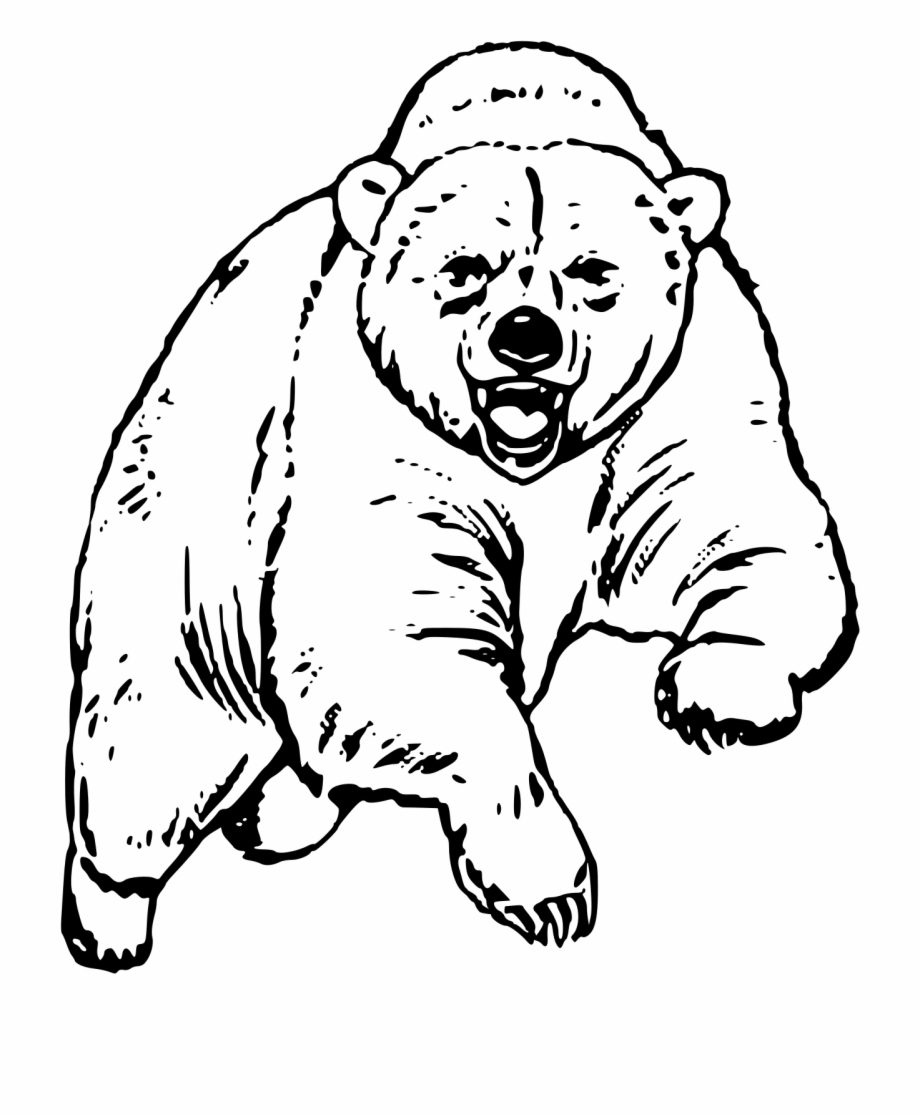 Scared bear clipart graphic library This Free Icons Png Design Of Big Bear - Scary Brown Bear ... graphic library