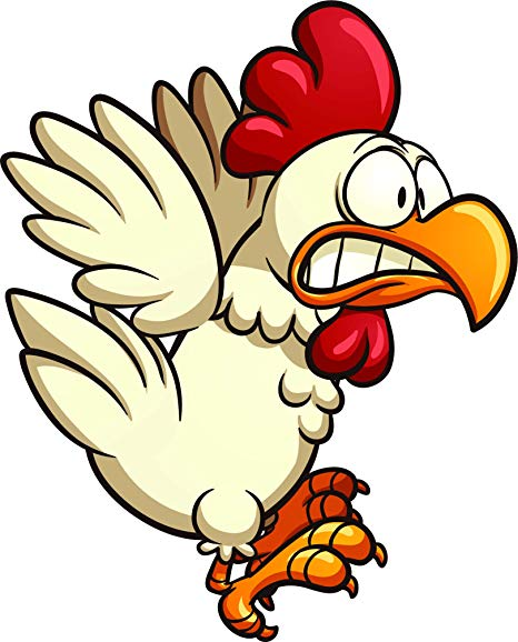 Scared chicken clipart image stock Amazon.com: Crazy Silly Running Scared Chicken Cartoon Vinyl ... image stock