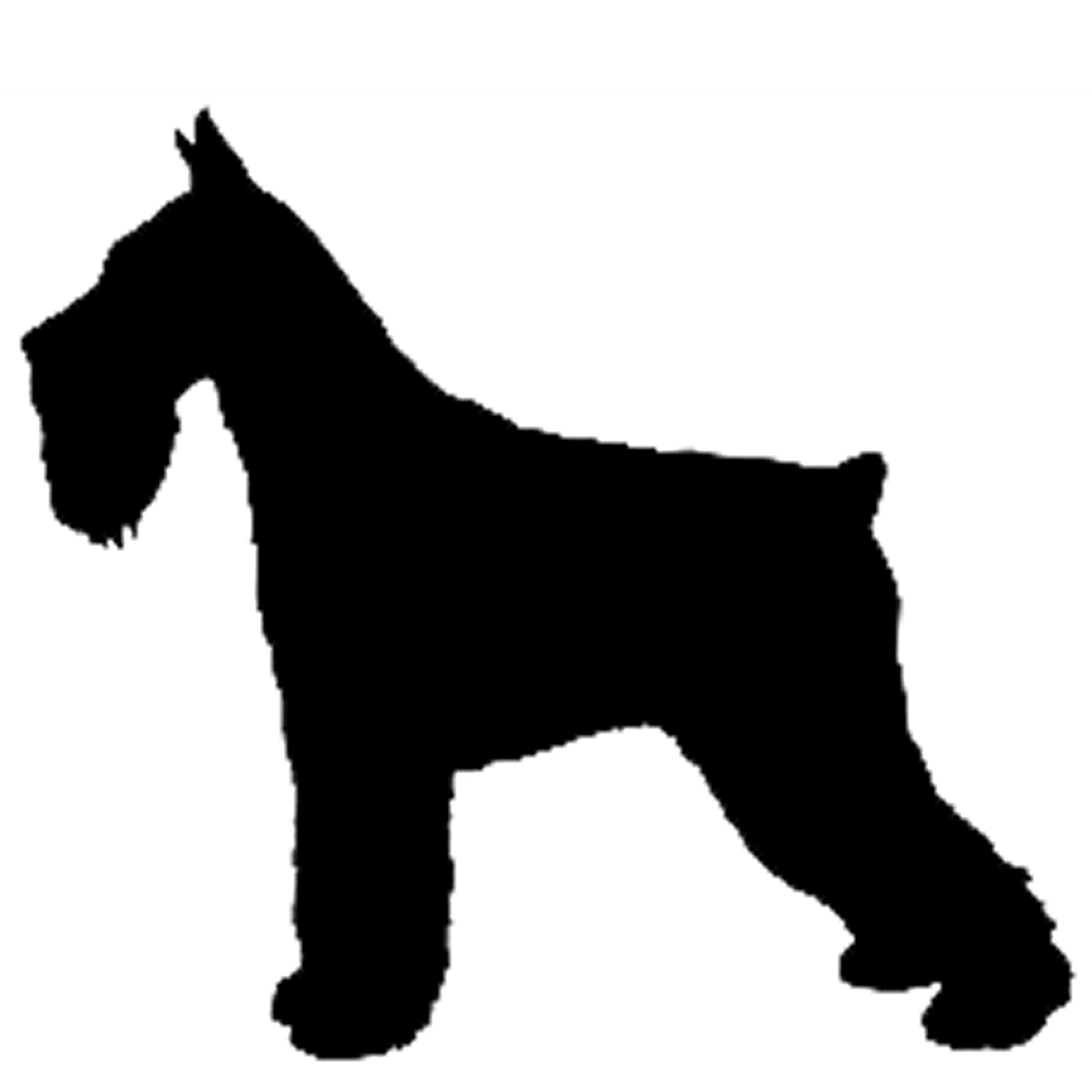 Giant Schnauzer Silhouette at GetDrawings.com | Free for personal ... vector library
