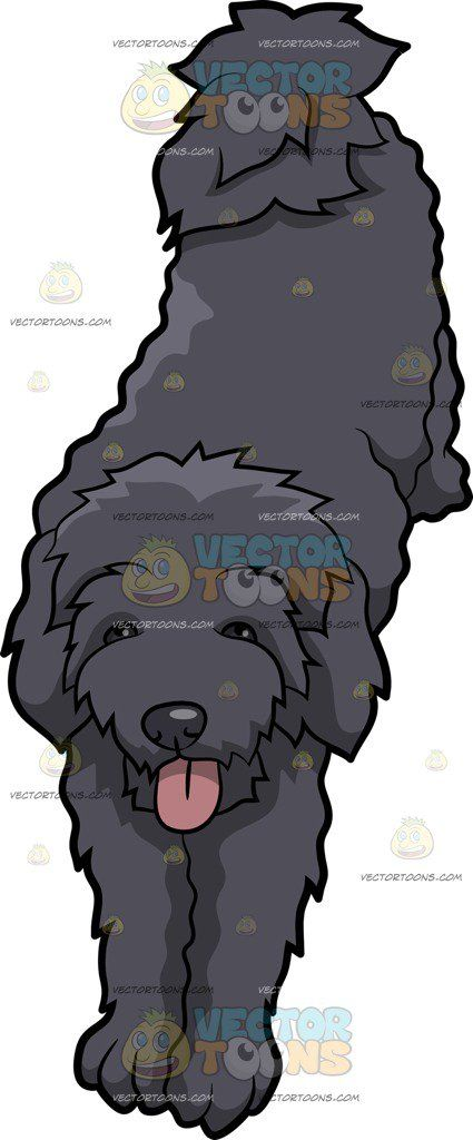 A Schnoodle Dog Stretching Its Body Cartoon Clipart ... jpg royalty free download