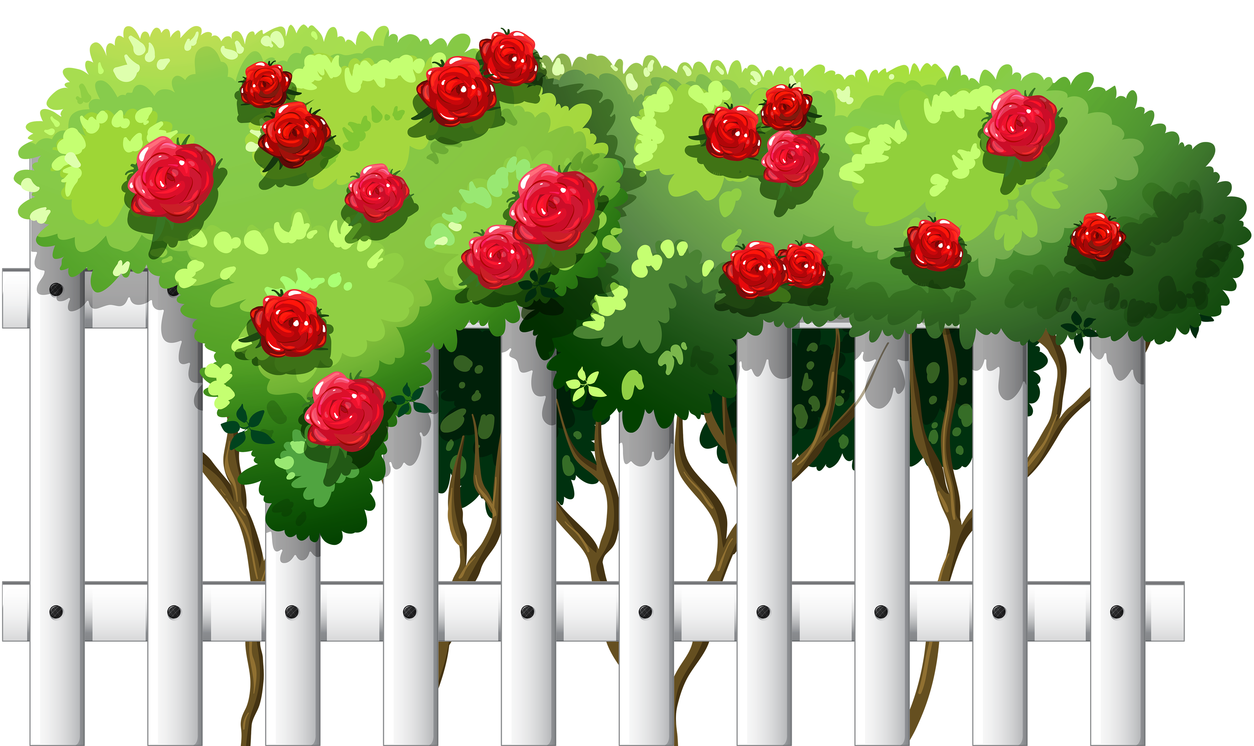 School fence clipart svg free library White Fence with Roses PNG Clipart - Best WEB Clipart svg free library