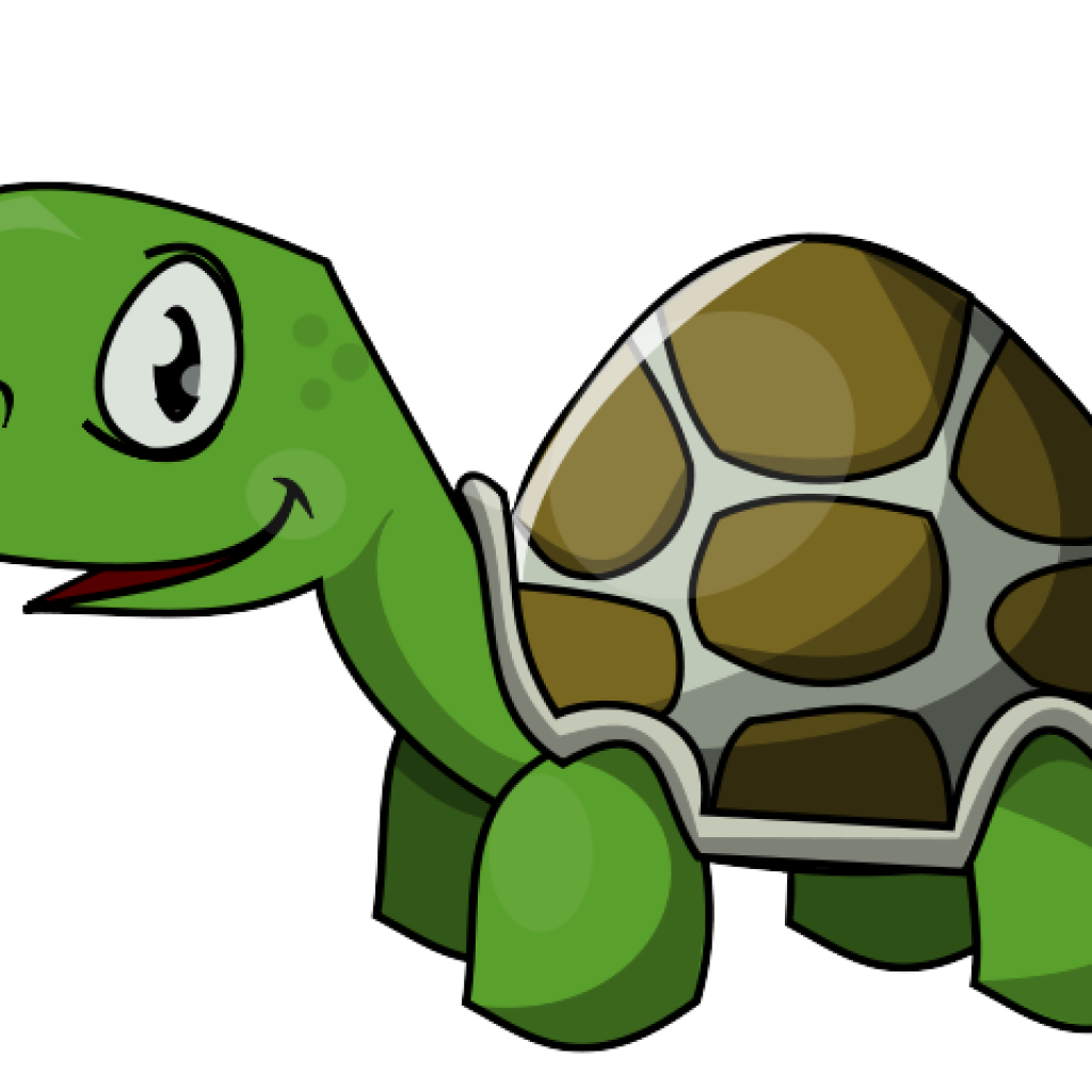 School turtle clipart