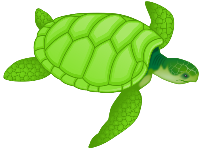 School turtle clipart image library Free Turtle Clipart and Animations image library