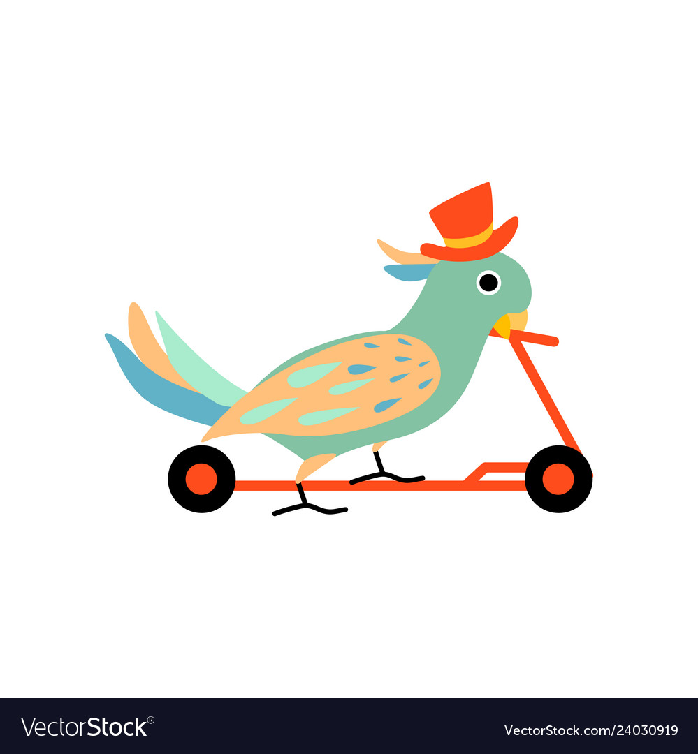 Scooter rider comedy clipart png library stock Parrot wearing top hat riding on kick scooter png library stock