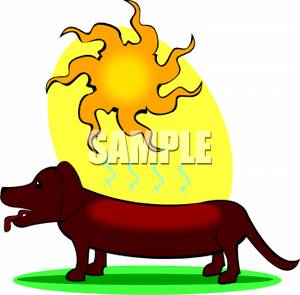 Scorched clipart clip library A Daschund Scorching In the Sun - Royalty Free Clipart Picture clip library