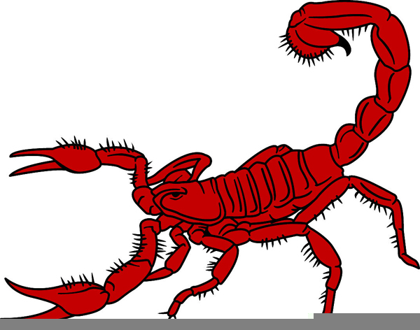 Scorpio clipart graphic free stock Scorpio Clipart | Free Images at Clker.com - vector clip art ... graphic free stock