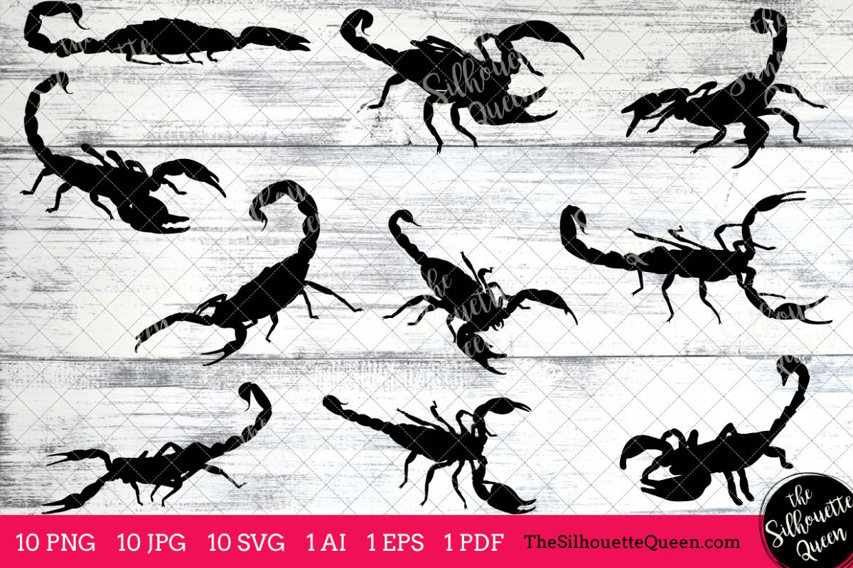 Scorpion silhouette clipart royalty free library Scorpion Silhouette Clipart Clip Art (AI, EPS, SVGs, JPGs, PNGs, PDF) ,  Scorpion Clip Art Clipart Vectors - Commercial and Personal Use royalty free library